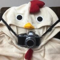 camera_chicken